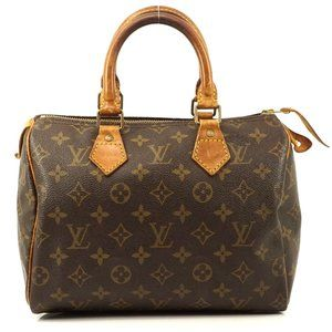 Auth Louis Vuitton Speedy 25 Boston Bag #3049L16